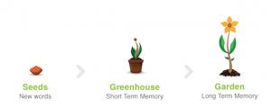 Memrise-Garden-Process