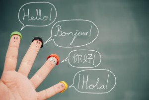 1433163069multilingualadviceinterviewswithexpers